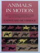 Animal In Motion Design Book
