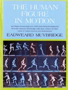 The human Figure In Motion Design Book
